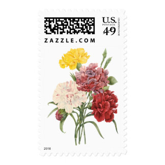 Vintage Carnations Dianthus Garden Flowers Redoute Postage
