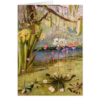 Vintage - Carnivorous Plants Greeting Card