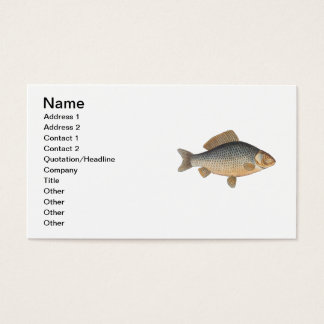 Vintage Carp Freshwater Fish Drawing Business Card