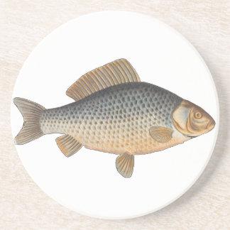 Vintage Carp Freshwater Fish Drawing Drink Coaster