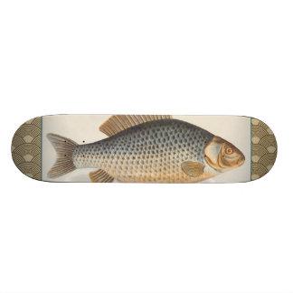 Vintage Carp Freshwater Fish Drawing Skateboard Deck