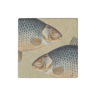 Vintage Carp Freshwater Fish Drawing Stone Magnet