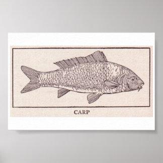 Vintage Carp Posters