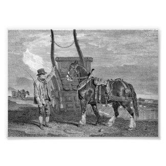 Vintage Cart Horse Art Photographic Print