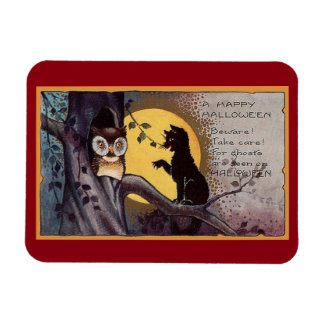 Vintage Cat And Owl Magnet