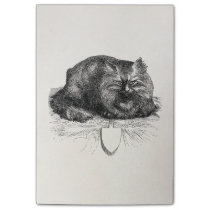 Vintage Cat Tag Angry Black Cats Animal Post-it Notes