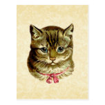 Vintage Cat with Pink Bow Postcard