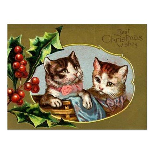Vintage Cats Christmas Postcard