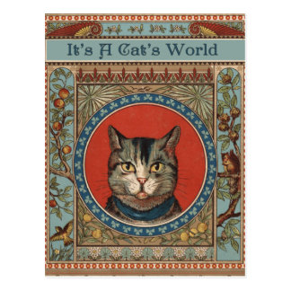 Vintage Cat's Life for Kitty Lovers Postcard