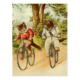 Vintage Cats Riding Bicycles Illustration Postcard