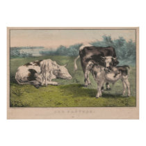 Vintage Cattle Farm Illustration (1856) Poster