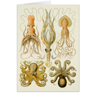 Vintage Cephalopods Card