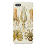 Vintage Cephalopods iPhone 5 Case