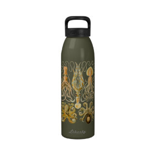 Vintage Cephalopods Reusable Water Bottle