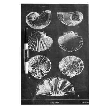 Beach Themed vintage chalkboard beach french country seashells dry erase board