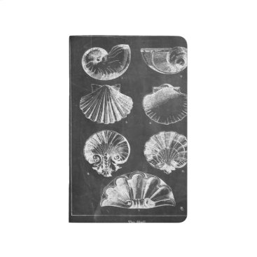 Beach Themed vintage chalkboard beach french country seashells journal