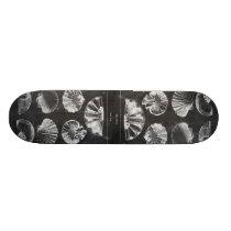 vintage chalkboard beach french country seashells skateboard deck