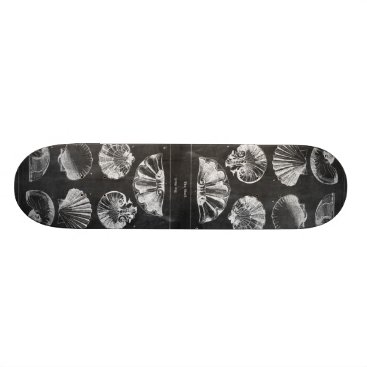 Beach Themed vintage chalkboard beach french country seashells skateboard deck