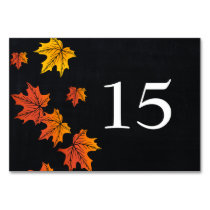 Vintage Chalkboard fall wedding table numbers