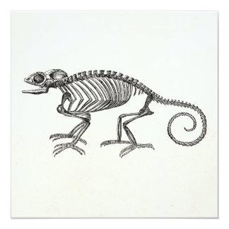 Vintage Chameleon Lizard Skeleton Template