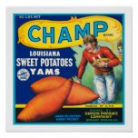 Vintage Champ Sweet Potatoes Print