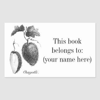 Vintage chayote etching bookplate