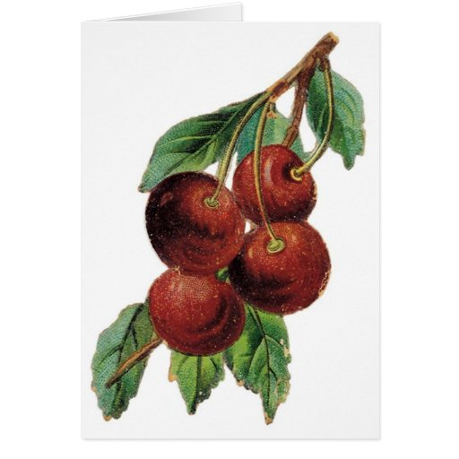 Vintage Cherries Customizable Greeting Cards