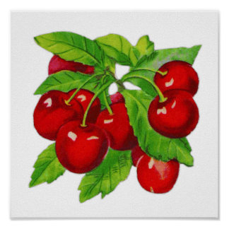 Vintage Cherry Kitchen Wall Decor Poster