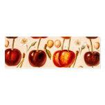 Vintage Cherry Varieties Antique Cherries Fruit Business Card