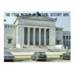 Vintage Chicago Field Museum Photo Postcards