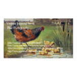 Vintage Chicken Items and Photography Business Card