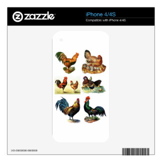 vintage chickens design iPhone 4 skins