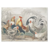 Vintage Chickens Tissue or Decoupage Paper
