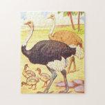 Vintage Childrens Book Illustration Ostrich Jigsaw Puzzles