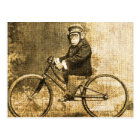 Vintage Chimpanzee on a Bicycle Postcard