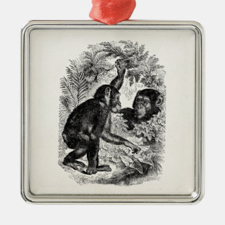 Vintage Chimpanzees 1800s Monkey Chimp Template Metal Ornament