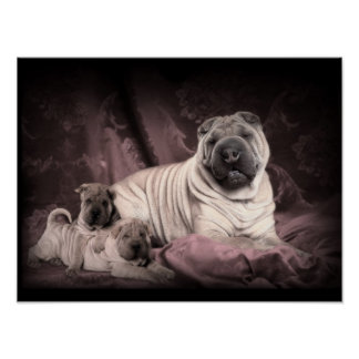 Vintage Chinese Shar Pei Wrinkles, Puppy Dogs Print
