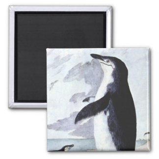 Vintage Chinstrap Penguin Bird from Antarctica 2 Inch Square Magnet