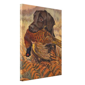 Vintage Chocolate Lab Hunting Stretched Canvas Prints