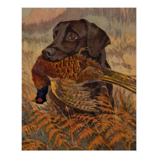 Vintage Chocolate Lab Hunting Poster