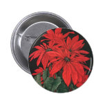 Vintage Christmas Blooming Red Poinsettia Flowers Pinback Button