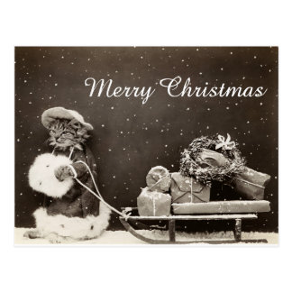 Vintage Christmas Cat with sled and wreath Postcard