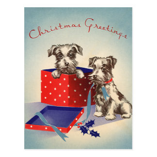 Vintage Christmas Cute Puppies Wrapped as Presents Postcard