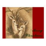 Vintage Christmas Deer Post Cards