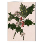 Vintage Christmas, Holly and Berries Cards