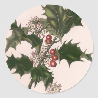Vintage Christmas Holly and Berries Round Stickers