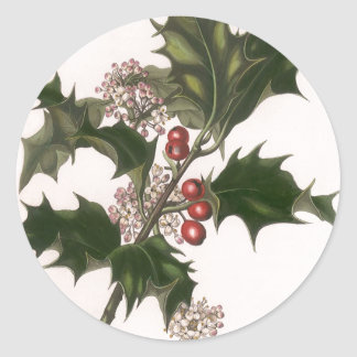 Vintage Christmas Holly and Berries Round Sticker