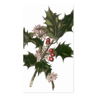 Vintage Christmas, Holly Plant with Red Berries Business Card Template