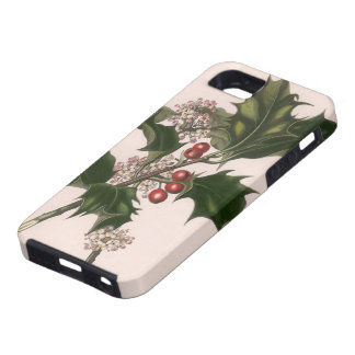 Vintage Christmas, Holly Plant with Red Berries iPhone SE/5/5s Case