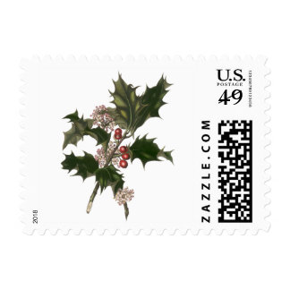 Vintage Christmas, Holly Plant with Red Berries Postage Stamps